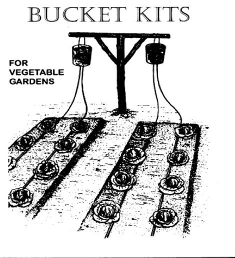 Djibouti_bucket